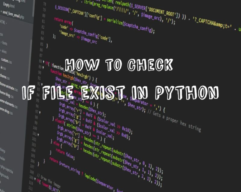 python check if file exists